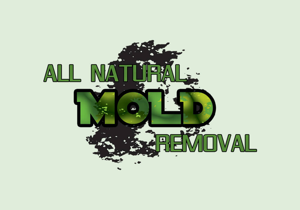 All Natural Mold Removal